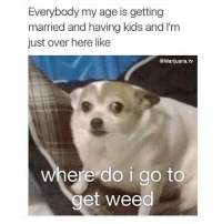 Weed, Kids, and Marijuana: Everybody my age is getting  married and having kids and I'm  just over here like  @Marijuana tv  where do i go to  get weed Real talk 👍