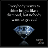 Visit us at www.wisdomquotesandstories.com: Everybody wants to  shine bright like a  diamond, but nobody  want to get cut!  Wisdom  Quotes Visit us at www.wisdomquotesandstories.com