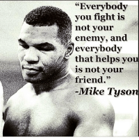 Memes, Mike Tyson, and Enemies: Everybody  you fight is  not your  enemy, and  everybody  that helps you  is not your  friend.  Mike Tyson Facts of Life 🤙🏼 Boxing boxingLife Boxeo mikeTyson