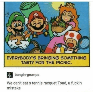 Tennis, Irl, and Me IRL: EVERYBODY'S BRINGING SOMETHING  TASTY FOR THE PICNIC.  bagin-grumps  We can't eat s tennis racquet Toad, u fuckin  mistake me_irl