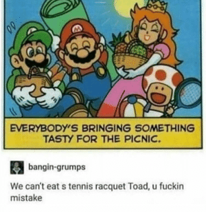 Tennis, Toad, and Tennis Racquet: EVERYBODY'S BRINGING SOMETHING  TASTY FOR THE PICNIC  bangin-grumps  We can't eat s tennis racquet Toad, u fuckin  mistake Freaking Toad