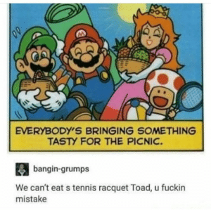Tennis, Why Are You Like This, and Toad: EVERYBODY'S BRINGING SOMETHING  TASTY FOR THE PICNIC.  bangin-grumps  We can't eat s tennis racquet Toad, u fuckin  mistake Why are you like this, Toad?