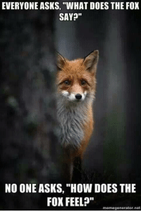 "Thats right.: EVERYONE ASKS, ""WHAT DOES THE FOX  SAY?""  NO ONE ASKS, ""How DOES THE  FOX FEEL?""  memegenerator.net Thats right."