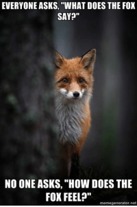 "fox say: EVERYONE ASKS, ""WHAT DOES THE FOX  SAY?""  NO ONE ASKS, ""How DOES THE  FOX FEEL?""  memegenerator.net"