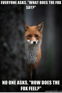 """3 more days and posts will increase a lot.  ~X: EVERYONE ASKS, """"WHAT DOES THE FOX  SAY?""""  NO ONE ASKS, """"How DOES THE  FOX FEEL?""""  memegenerator.net 3 more days and posts will increase a lot.  ~X"""