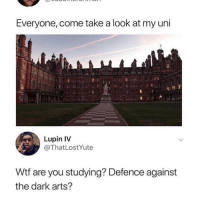 Memes, Wtf, and Arts: Everyone, come take a look at my uni  Lupin IV  @ThatLostYute  Wtf are you studying? Defence against  the dark arts? 😂😩