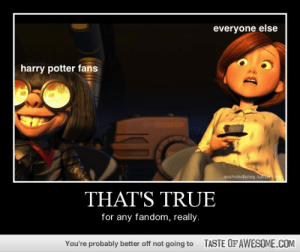 You Can't Deny It.http://omg-humor.tumblr.com: everyone else  harry potter fans  assholedisney.tumbc  THAT'S TRUE  for any fandom, really.  TASTE OF AWESOME.COM  You're probably better off not going to You Can't Deny It.http://omg-humor.tumblr.com