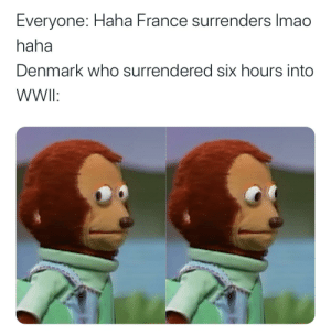 This sub in a nutshell: Everyone: Haha France surrenders Imao  haha  Denmark who surrendered six hours into  WWI: This sub in a nutshell