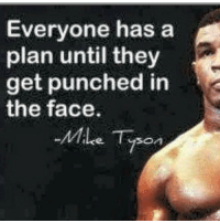 Punched In The Face: Everyone has a  plan until they  get punched in  the face.  Mile Tyson