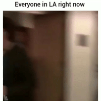 Damn its hectic: Everyone in LA right now Damn its hectic