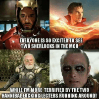 😂: EVERYONE IS SO EXCITED TO SEE  TWO SHERLOCKS IN THE MCU  WHILE ITM MORE TERRIFIED BYTHE TWO  HANNIBAL 😂