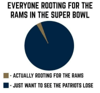 Patriotic, Super Bowl, and Rams: EVERYONE ROOTING FOR THE  RAMS IN THE SUPER BOWL  ACTUALLY ROOTING FOR THE RAMS  JUST WANT TO SEE THE PATRIOTS LOSE Sounds accurate