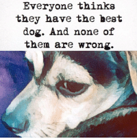 Best, Dog, and Can: Everyone thinka  they have the best  dog. And none of  them are wrong. <p>There can be more than one best doggos.</p>