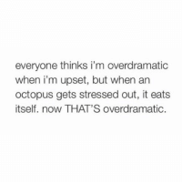 Bored, Memes, and True: everyone thinks i'm overdramatic  when i'm upset, but when an  octopus gets stressed out, it eats  itself. now THAT'S overdramatic. True. Octopuses (and yes, that is a correct plural) have been known to eat their arms when stressed out or even just bored.