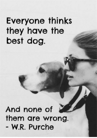 18 Heart-warming Dog Quotes About Life and Love >>  ❤️ See more: http://fallinpets.com/heart-warming-dog-quotes-about-life-and-love/: Everyone thinks  they have the  best dog  And none of  them are wrong.  W.R. Purche 18 Heart-warming Dog Quotes About Life and Love >>  ❤️ See more: http://fallinpets.com/heart-warming-dog-quotes-about-life-and-love/