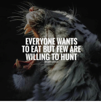 Adele, Beyonce, and Instagram: EVERYONE WANTS  TO EAT BUT FEW ARE  WILLING TO HUNT  @6AMSUCCESS Tag your team 👇🏼 6amsuccess give this life all you go - go after your dreams ➖➖➖➖➖➖➖➖➖➖➖➖➖➖➖➖➖➖ @leomessi @kimkardashian @jlo @adele @ddlovato @katyperry @danbilzerian @kevinhart4real @thenotoriousmma @justintimberlake @taylorswift @beyonce @davidbeckham @selenagomez @therock @thegoodquote @instagram @champagnepapi @cristiano