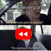 Why, You, and Normal: everyone  Why eant you just be normal?  Screams in fortnite Im doing my part