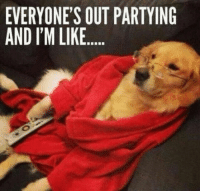 Funny, Quotes, and Laughing: EVERYONE'S OUT PARTYING  AND I'M LIKE.. 38 Funny Quotes Laughing So Hard 20