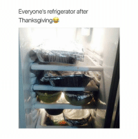 Refrigerator, Girl Memes, and After Thanksgiving: Everyone's refrigerator after  Thanksgiving wohoo