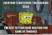 Bad, Game of Thrones, and Memes: EVERYONE'S WATCHING THE WALKING  DEAD  Thrones Memes  IM JUST SITTING HERE WAITING FOR  GAME OF THRONES  MEMEFUL COM true, the walking dead kinda keeps me busy so it isn't that bad🤔