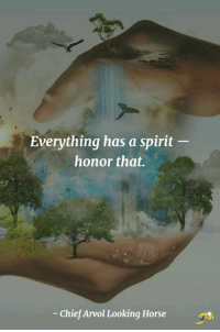 Everything has a spirit  honor that.  Chief Arvol Looking Horse Honor the spirit in everything!  Namaste  ॐ