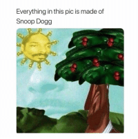 Memes, Snoop, and Snoop Dogg: Everything in this pic is made of  Snoop Dogg when you see it, tag someone 👇🏽