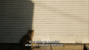 Love, You, and Look: Everything is beautifu  when you look at it with love
