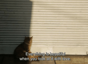 Beautiful, Love, and You: Everything is beautiful  when you look at it with love