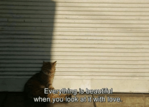 Beautiful, Love, and You: Everything is-beautiful  when you look at it with love