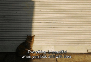 look at it: Everything is beautiful  when you look at it with love.