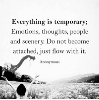 Life, Memes, and Anonymous: Everything is temporary;  Emotions, thoughts, people  and scenery. Do not become  attached, just flow with it.  Anonymous Nothing in life is certain nor guaranteed. Be prepared for everything to go wrong. Never be unprepared.