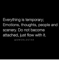 """Moment, People, and Just: Everything is temporary;  Emotions, thoughts, people and  scenery. Do not become  attached, just flow with it.  a QWORLDSTAR """"Nothing stays the same...every moment is fleeting..."""" 💯 @QWorldstar https://t.co/XlTUJZFemz"""