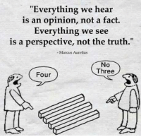 "Memes, Live, and World: ""Everything we hear  is an opinion, not a fact  Everything we see  is a perspective, not the truth  - Marcus Aurelius  No  Three  Four Perspectives and opinions rules the world we live in. Ignore the opinions, look past the perspectives."