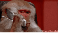 Girl Memes, Him, and Man: EverythingTaj Me calling my man when someone makes me upset expecting him to have a solution https://t.co/ovgBJRLTk8