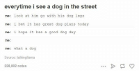 I Bet, Memes, and Only One: everytime i see a dog in the street  me look at him go with his dog legs  me: i bet it has great dog plans today  me: i hope it has  a good dog day  me  me: what a dog  Source: talkingllama  228,802 notes am i the only one that does this or
