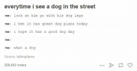 I Bet, Memes, and Good: everytime i see a dog in the street  me look at him go with his dog legs  me: i bet it has  great dog plans today  me: i hope it has a good dog day  me  me: what a dog  Source: talkingllama  228,802 notes https://t.co/XuMS5Sr6xC