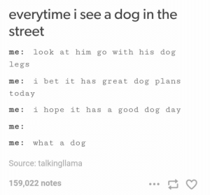 I Bet, Tumblr, and Good: everytime i see a dog in the  street  me: look at him go with his dog  legs  me: i bet it has great dog plans  today  me: i hope it has a good dog day  me  me: what a dog  Source: talkingllama  159,022 notes Everytime I see a dogomg-humor.tumblr.com