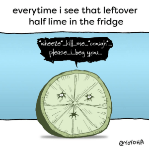 """Omg, Sorry, and Tumblr: everytime i see that leftover  half lime in the fridge  wheeze""""..kill me 关cough  please...beg you  @YoYoHA omg-images:  sorry buddy someone might need you for something"""