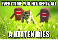 reply all: EVERYTIME YOU HIT REPLY ALL  A KITTENDIES