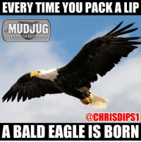 Memes, 🤖, and Bald Eagle: EVERYTIME YOU PACK ALIP  MUDJUG  portable spittoons  @CHRISDIPS1  A BALD EAGLE IS BORN 🤘🏻🇺🇸🤘🏻🦅 mudjug dip30 packdipspit photo by @chrisdips1