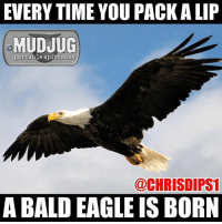 Memes, 🤖, and Bald Eagle: EVERYTIME YOU PACKALIP  MUDJUG  portable spittoons  @CHRISDIPS1  A BALD EAGLE ISBORN 🤘🏻🇺🇸🤘🏻🦅#mudjug #dip30 #packdipspit photo by @chrisdips1