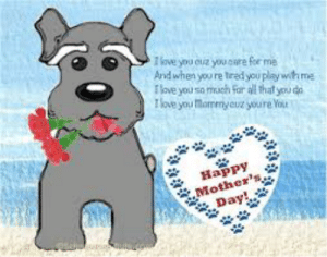 Happy Mother's Day everypawdy!! :  ))))))) ❤: eveyou ouz you care for me  And when you re tred you play with ma  love you so msgh For al that you d  Tlove you Mammycuz youre You  Happy  Mother  Day; Happy Mother's Day everypawdy!! :  ))))))) ❤