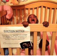 "It's timeee 😂. Anyone taking this baby in?: EVICTION NOTICE  Please Note that Your ""Only-Child"" Status will Expire  within 18 weeks PLEASE TAKE FURTHER NOTE that  You are REQUIRED to VACATE THE PREMISES as a  New Tenant is Expected on June 25, 2017  Thanks  Management aka Mommmy and 04-D4 It's timeee 😂. Anyone taking this baby in?"