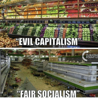 America, Funny, and Instagram: EVIL CAPITALISM,  TURNIN  POINT US  FAIR SOCIAUISM People who say capitalism is evil have never lived in a society that isn't capitalist, or have been in power in communist countries. These liberals that attack capitalism don't know what it's like to live without being able to go to the grocery story and have all of the shelves stocked. Communism has killed more than 93 million people since it was created. A lot of those people died in famines. People say capitalism isn't fair, but what's more unfair? Everybody getting an equal shot at success in life if they work hard, or only the people in power having success, and everybody else fails regardless of how hard they work? I'll stick with capitalism. 🔴www.TooSavageForDemocrats.com🔴 JOINT INSTAGRAM: @rightwingsavages Partners: 🇺🇸 @The_Typical_Liberal 🇺🇸 @theunapologeticpatriot 🇺🇸 @DylansDailyShow 🇺🇸 @keepamerica.usa 🇺🇸@Raised_Right_ 🇺🇸@conservative.female 🇺🇸 @too_savage_for_liberals 🇺🇸 @Conservative.American DonaldTrump Trump 2A MakeAmericaGreatAgain Conservative Republican Liberal Democrat Ccw247 MAGA Politics LiberalLogic Savage TooSavageForDemocrats Instagram Merica America PresidentTrump Funny True SecondAmendment