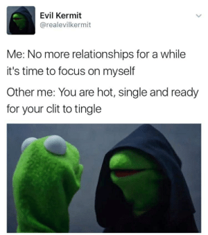 Evil Kermit : Evil Kermit  @realevilkermit  Me: No more relationships for a while  it's time to focus on myself  Other me: You are hot, single and ready  for your clit to tingle