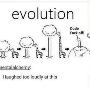 Dude, Evolution, and Fuck: evolution  Dude  Fuck off  nentalalchemy:  I laughed too loudly at this Long neck bois