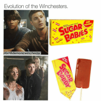 Accurate af ✌️⠀⠀⠀⠀⠀⠀⠀⠀⠀⠀⠀⠀⠀⠀⠀⠀⠀⠀⠀⠀⠀⠀⠀⠀⠀⠀⠀⠀⠀⠀⠀⠀⠀⠀⠀⠀ ➖⠀⠀⠀⠀⠀⠀⠀ spnfamily spn supernatural destiel tumblr castiel mishacollins cockles deanwinchester samwinchester jensenackles jaredpadalecki tumblr winchester spncast sherlock sherlockrp johnlockrp benedictcumberbatch martinfreeman ⠀⠀⠀⠀⠀⠀⠀⠀⠀⠀⠀⠀⠀⠀⠀⠀⠀⠀⠀⠀ ⠀⠀⠀ ➖: Evolution of the Winchesters.  ONE  D cious  ed Milk Caramels  Candy  Coa  BABIES  IG//@demonicwinchester Accurate af ✌️⠀⠀⠀⠀⠀⠀⠀⠀⠀⠀⠀⠀⠀⠀⠀⠀⠀⠀⠀⠀⠀⠀⠀⠀⠀⠀⠀⠀⠀⠀⠀⠀⠀⠀⠀⠀ ➖⠀⠀⠀⠀⠀⠀⠀ spnfamily spn supernatural destiel tumblr castiel mishacollins cockles deanwinchester samwinchester jensenackles jaredpadalecki tumblr winchester spncast sherlock sherlockrp johnlockrp benedictcumberbatch martinfreeman ⠀⠀⠀⠀⠀⠀⠀⠀⠀⠀⠀⠀⠀⠀⠀⠀⠀⠀⠀⠀ ⠀⠀⠀ ➖