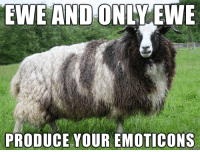 kawaii emoticons: EWE AND ONLY  EWE  PRODUCE YOUR EMOTICONS