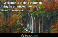 Memes, Common, and Booker T: Excellence is to do a common  thing in an uncommon way.  Booker T. Washington  Brainy  Quote Excellence is to do a common thing in an uncommon way. - Booker T. Washington