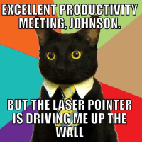 "Advice, Tumblr, and Animal: EXCELLENT PRODUCTIVITY  MEETING. JOHNSON  BUT THE LASER POINTER  IS DRIVINGME UP THE  WALL <p><a href=""http://advice-animal.tumblr.com/post/171467493009/whatever-happened-to-this-guy"" class=""tumblr_blog"">advice-animal</a>:</p>  <blockquote><p>Whatever happened to this guy?</p></blockquote>"